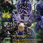 orquideas-santa-ana