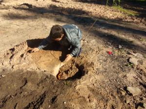Alumno de  Escuela  105 Pedro Matoso, plantando y apadrinando un árbol en su comunidad