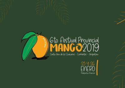 banner 6to festival provincial del mango
