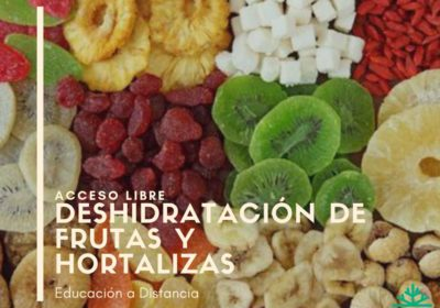 banner del curso de Deshidratación de frutas y hortalizas